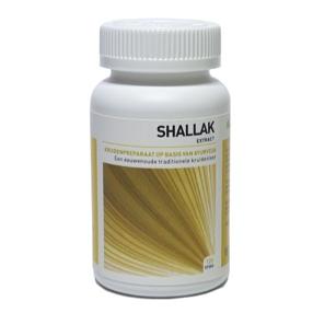 Shallak (Boswellia serrata)