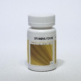 Spondylforte
